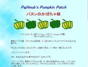 パヌンのかぼちゃ畑